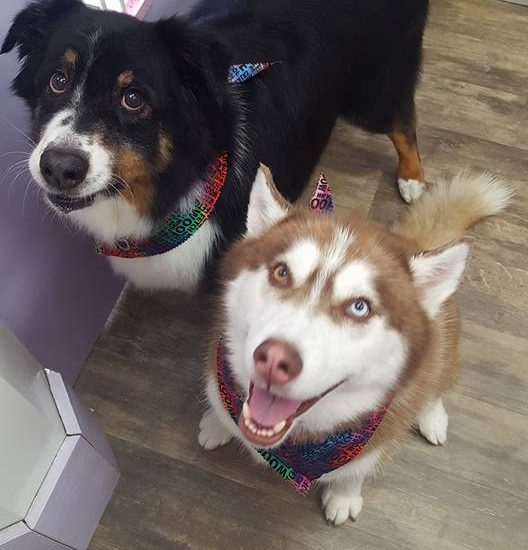 Jake & Mia